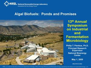 Primary view of object titled 'Algal Biofuels: Ponds and Promises (Presentation)'.