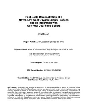 Primary view of object titled 'Pilot-Scale Demonstration of a Novel, Low-Cost Oxygen Supply Process and its Integration with Oxy-Fuel Coal-Fired Boilers'.