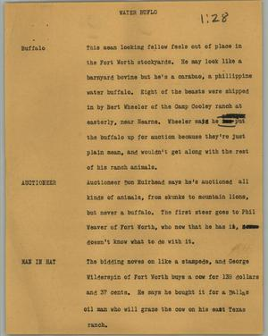 Primary view of object titled '[News Script: Water buflo]'.