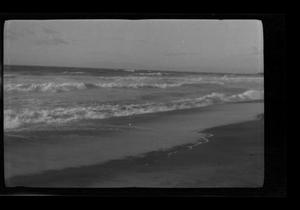 Primary view of object titled '[Landscape photograph of a shoreline]'.