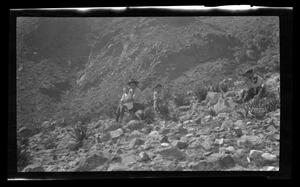 Primary view of object titled '[Irene, Charles, Byrd III, and John sitting on a hillside]'.
