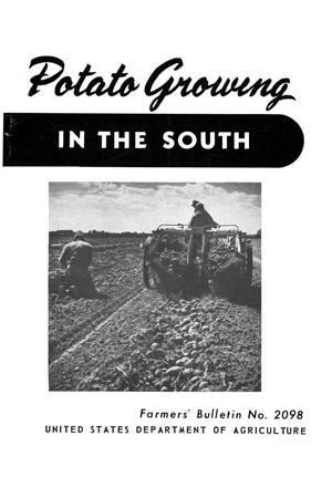 Primary view of object titled 'Potato growing in the South.'.
