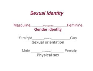 MSM: Sexual Identities and Behaviours - Digital Library