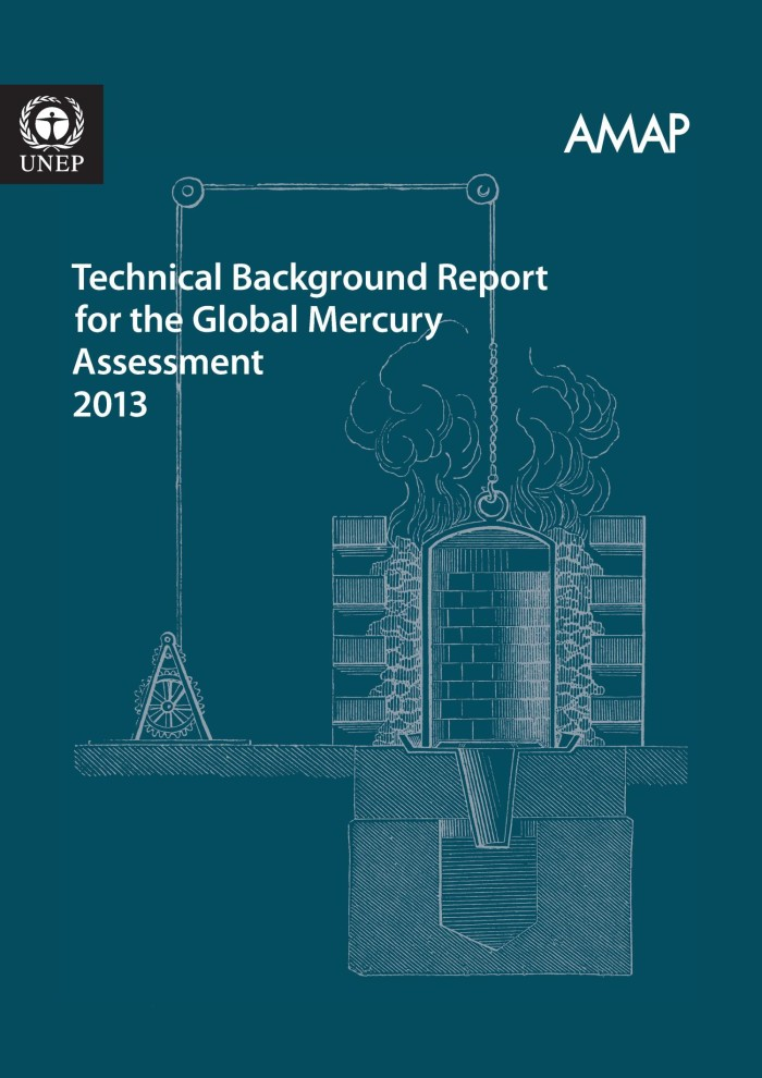 Technical Background Report For The Global Mercury Assessment 2013 Unt Digital Library Inspection palpation percussion auscultation (performed in this order usually). technical background report for the