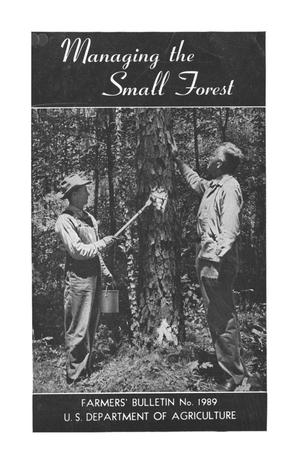 Primary view of object titled 'Managing the small forest'.