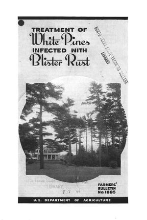 Primary view of object titled 'Treatment of white pines infected with blister rust.'.