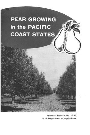 Primary view of object titled 'Pear growing in the Pacific Coast states.'.