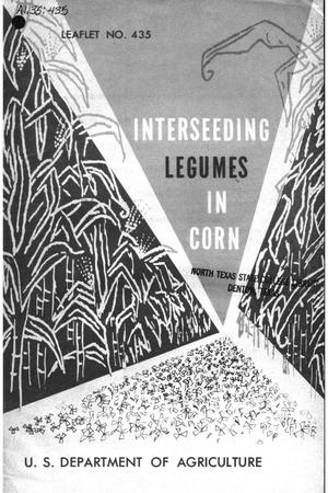 Primary view of object titled 'Interseeding Legumes in Corn.'.