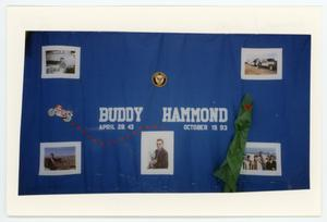 Primary view of object titled '[AIDS Memorial Quilt Panel for Buddy Hammond]'.