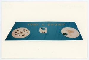 Primary view of object titled '[AIDS Memorial Quilt Panel for Tony Brown]'.
