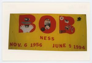 Primary view of object titled '[AIDS Memorial Quilt Panel for Bob Ness]'.