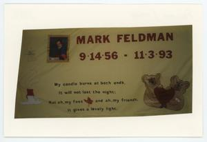 Primary view of object titled '[AIDS Memorial Quilt Panel for Mark Feldman]'.