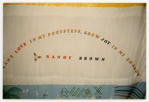 Primary view of object titled '[Quilt Panel for Randy Brown]'.