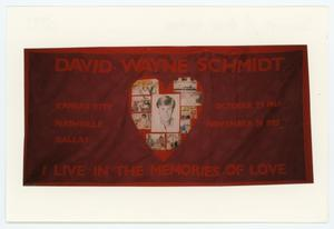 Primary view of object titled '[AIDS Memorial Quilt Panel for David Wayne Schmidt]'.