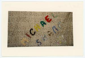 Primary view of object titled '[AIDS Memorial Quilt Panel for Michael Sharp]'.