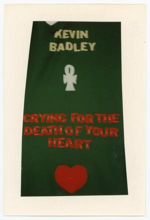 Primary view of object titled '[AIDS Memorial Quilt Panel for Kevin Badley]'.