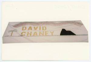 Primary view of object titled '[AIDS Memorial Quilt Panel for David Chaney]'.