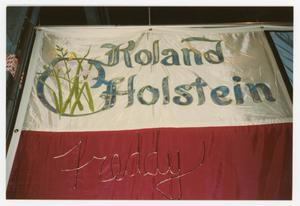 Primary view of object titled '[Quilt Section with Panels Dedicated to Roland Holstein and Freddy]'.