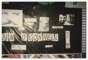 Primary view of object titled '[Quilt Panel for Jim O'Connell]'.