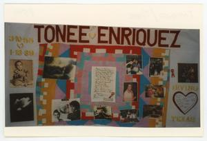 Primary view of object titled '[AIDS Memorial Quilt Panel for Tonee Enriquez]'.