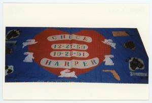 Primary view of object titled '[AIDS Memorial Quilt Panel for Chuck Harper]'.