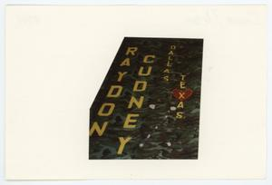 Primary view of object titled '[AIDS Memorial Quilt Panel for Raydon Cudney]'.