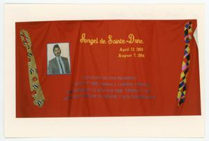 Primary view of object titled '[AIDS Memorial Quilt Panel for Angel de Sainte-Dane]'.