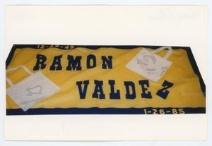 Primary view of object titled '[AIDS Memorial Quilt Panel for Ramon Valdez]'.