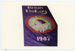 Primary view of object titled '[AIDS Memorial Quilt Panel for Brian DeLay ]'.