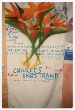 Primary view of object titled '[AIDS Memorial Quilt Panel for Charles Engstrand]'.