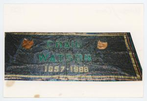 Primary view of object titled '[AIDS Memorial Quilt Panel for Craig Watson]'.