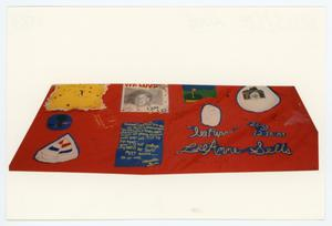 Primary view of object titled '[AIDS Memorial Quilt Panel for Lee Anne Sells]'.