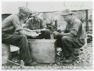 Primary view of object titled '[Three Boys Peeling Potatoes]'.