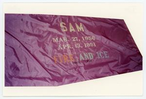 Primary view of object titled '[AIDS Memorial Quilt Panel for Sam]'.