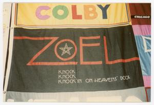 Primary view of object titled '[Quilt Section with Panels for Colby and Zoel]'.