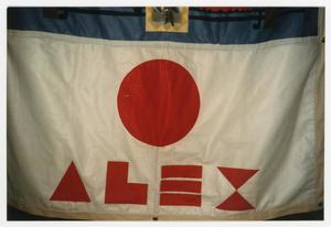 Primary view of object titled '[Quilt Panel for Alex]'.