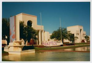 Primary view of object titled '[NAMES Project at Fair Park]'.