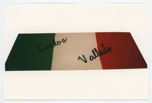 Primary view of object titled '[AIDS Memorial Quilt Panel for Carlos Vallado]'.