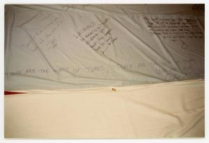 Primary view of object titled '[Signed Quilt Section with Inscriptions]'.