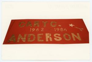 Primary view of object titled '[AIDS Memorial Quilt Panel for Gary G. Anderson]'.