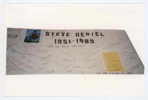 Primary view of object titled '[AIDS Memorial Quilt Panel for Steve Oertel]'.