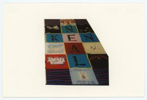 Primary view of object titled '[AIDS Memorial Quilt Panel for Ken Neal]'.