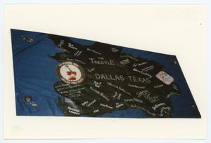 Primary view of object titled '[AIDS Memorial Quilt Panel for Trestle]'.