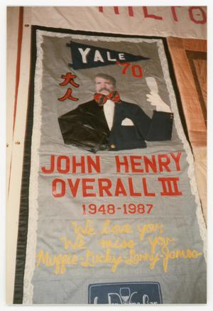 Primary view of object titled '[Quilt Panel for John Henry Overall III]'.