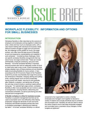 Primary view of object titled 'Workplace Flexibility: Information and Options for Small Businesses'.