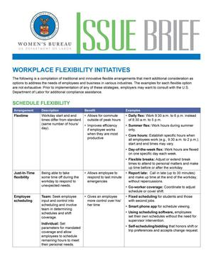 Primary view of object titled 'Workplace Flexibility Initiatives'.