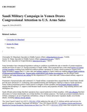 Primary view of object titled 'Saudi Military Campaign in Yemen Draws Congressional Attention to U.S. Arms Sales'.