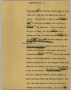 Primary view of object titled '[News Script: Trampoline]'.