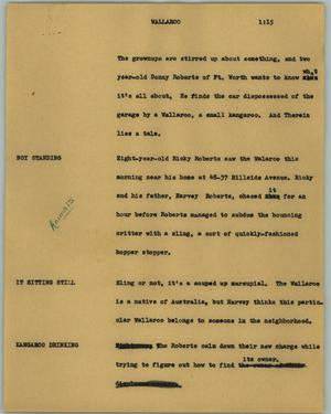 Primary view of object titled '[News Script: Wallaroo]'.