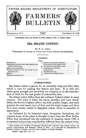 Primary view of object titled 'Sea Island Cotton'.